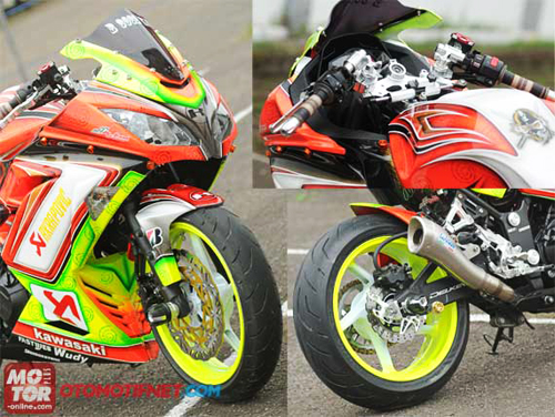 Kawasaki Ninja 250R ve Airbrush sac so - 2