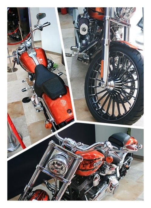 Ngam ban do chinh hang HarleyDavidson 2014 - 4