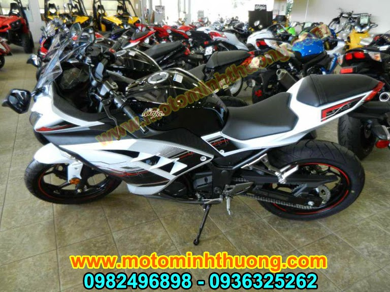 Kawasaki Ninja 300 ABS 2014 hang chat gia tot - 4