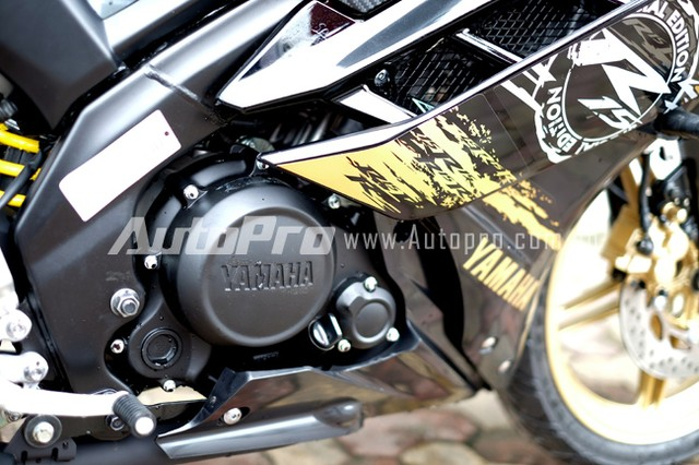 Can canh Yamaha R15 Special Edition tai Viet Nam - 15