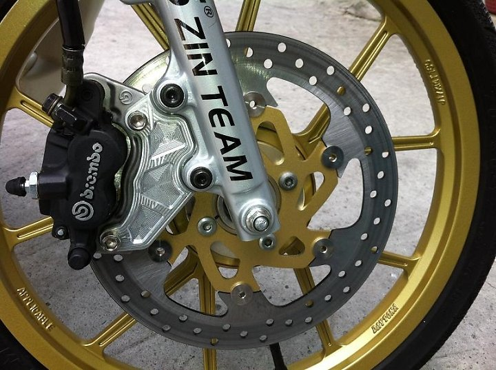 Vai hinh anh ve nhung con heo Brembo cung patch - 2