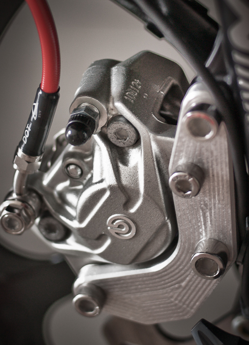 Vai hinh anh ve nhung con heo Brembo cung patch - 3
