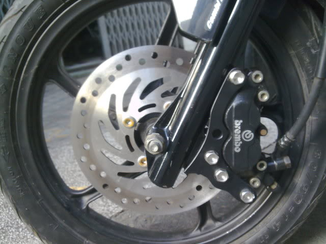 Vai hinh anh ve nhung con heo Brembo cung patch - 4