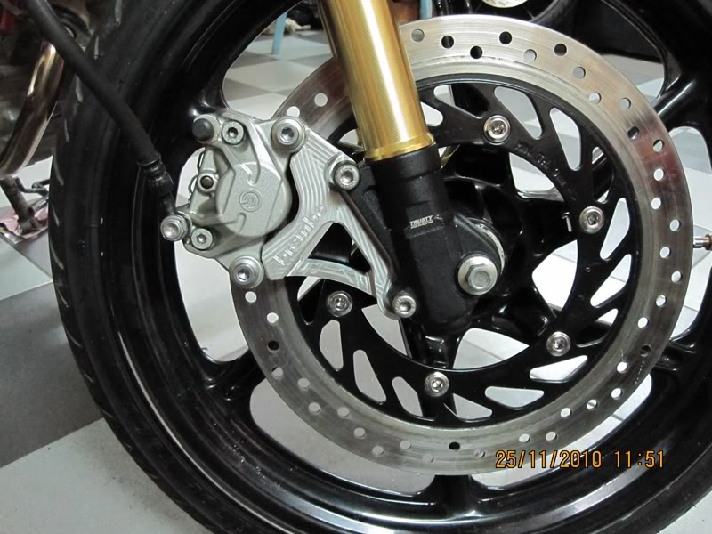 Vai hinh anh ve nhung con heo Brembo cung patch - 6