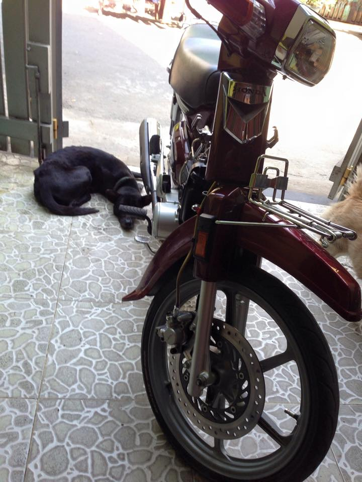 Honda Dream do cung cap voi mam CBR