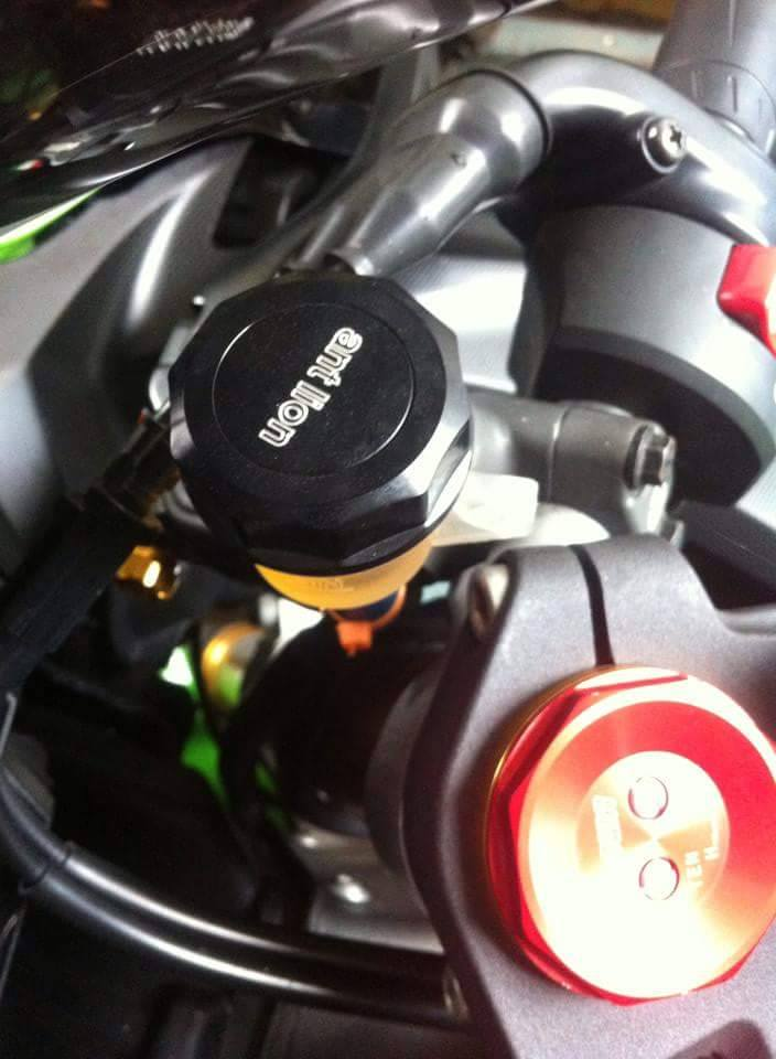 Kawasaki ZX10R do chat choi voi nhung option don gian - 6