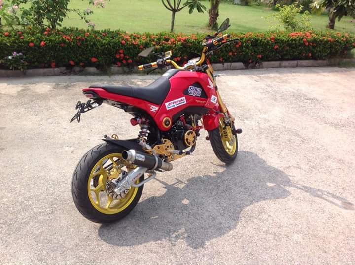 Can canh mam ASIO Size 14 inch cho Honda MSX tai nuoc ban - 4