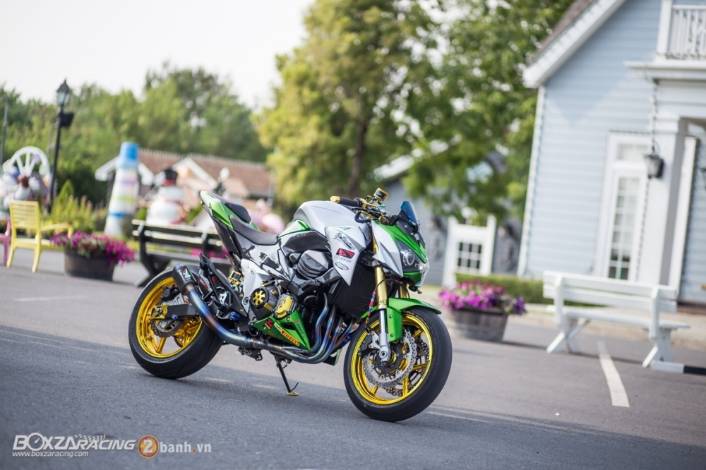 Kawasaki Z800 do day an tuong voi phien ban Green Giant - 26