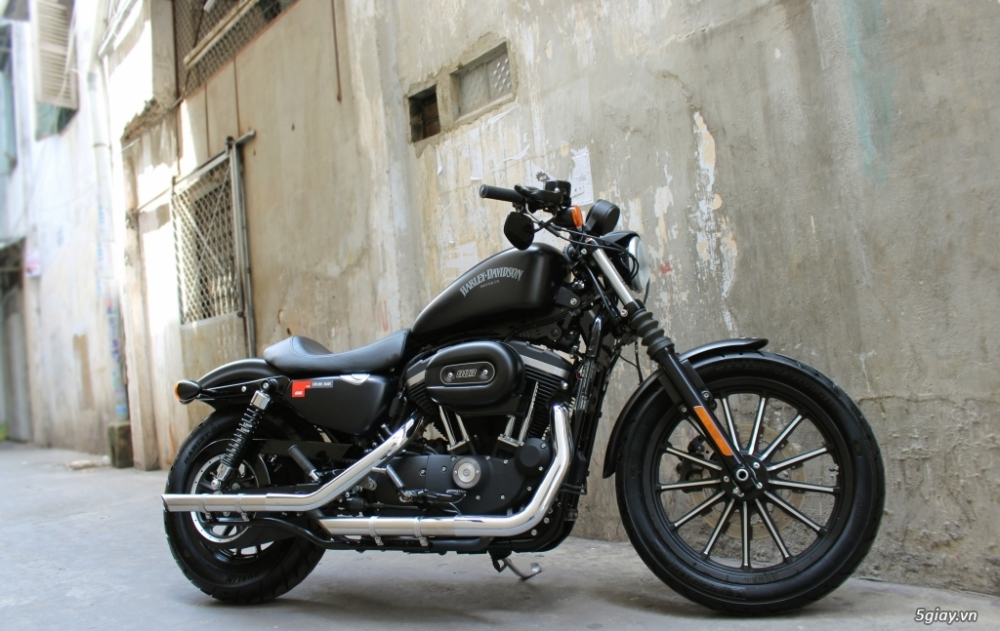 ___ Can Ban ___HARLEY DAVIDSON 883 Iron ABS 2016___ - 6